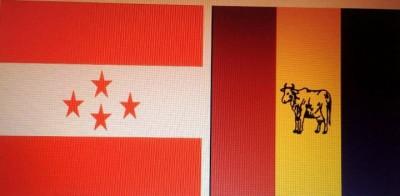 combine-flag-1510748451.jpg