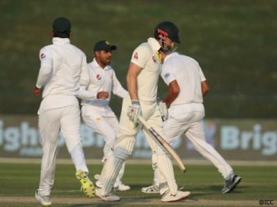 Cricket-1539913133.jpg