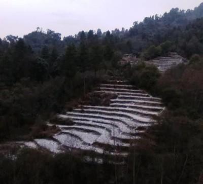 Himpat-1546824199.jpg